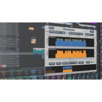 VOCALIGN PROJECT 3 - Licença Nova