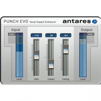 Punch Evo